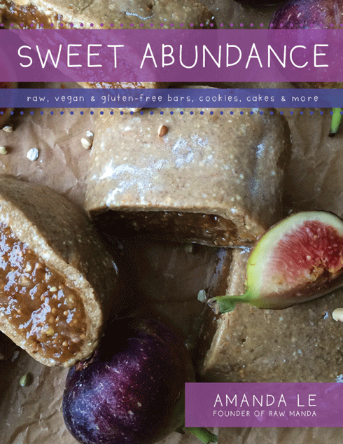 Sweet abundance ebook raw vegan dessert recipes all recipes are free of dairy gluten refined sugar with plenty of nut free recipes each dessert is crafted with love for vegans and non vegans alike forumfinder Images